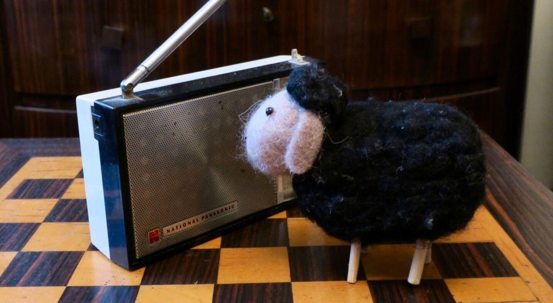 Radio Mouton chronique