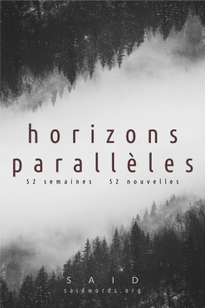 Horizons Paralleles SAID